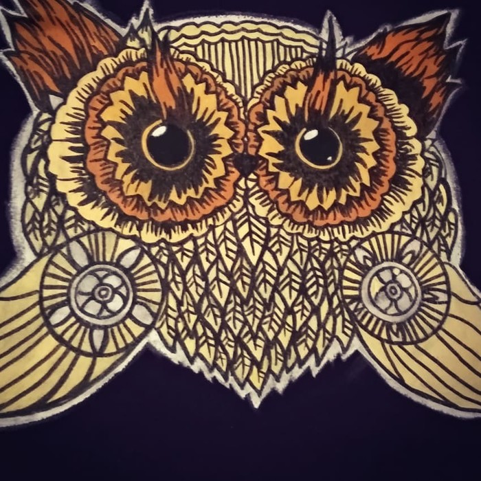 Рисуем сову на футболке Акрил, Сова, Урок, Роспись по ткани, Футболка, Ручная работа, Роспись, Длиннопост