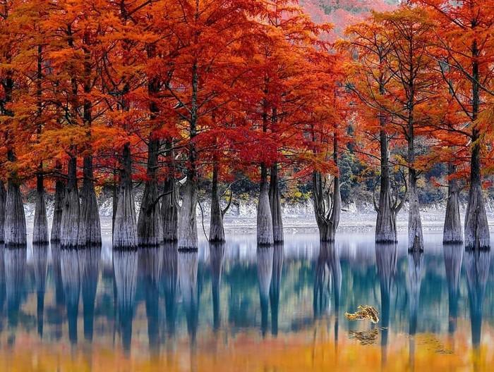 Озеро Сукко, Краснодарский край