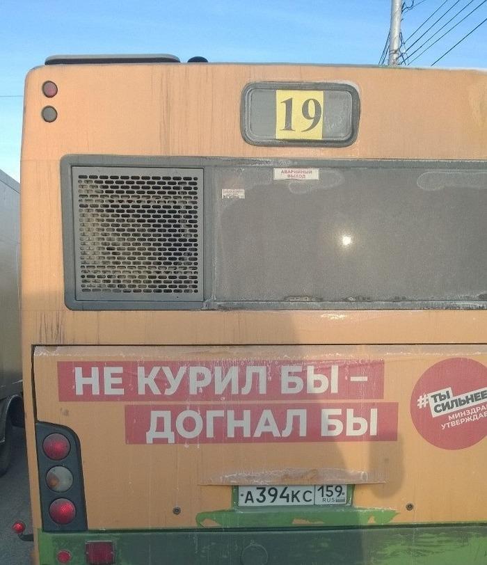 Автобус плохого не посоветует