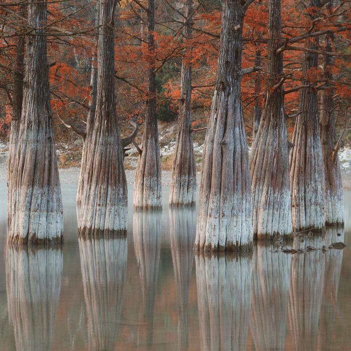 Кипарисовое озеро, Сукко Сукко, Анапа, Краснодарский Край, Озеро, Фотография, Путешествия, Туризм, Длиннопост