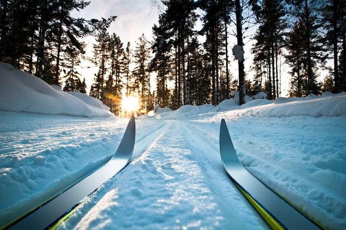 Решили с утра прокатиться на лыжах))