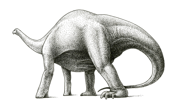 Итоги челленджа DrawDinovember-2018 Динозавры, Палеонтология, Dotwork, Познавательно, Хобби, Палеоарт, Рисунок, Длиннопост