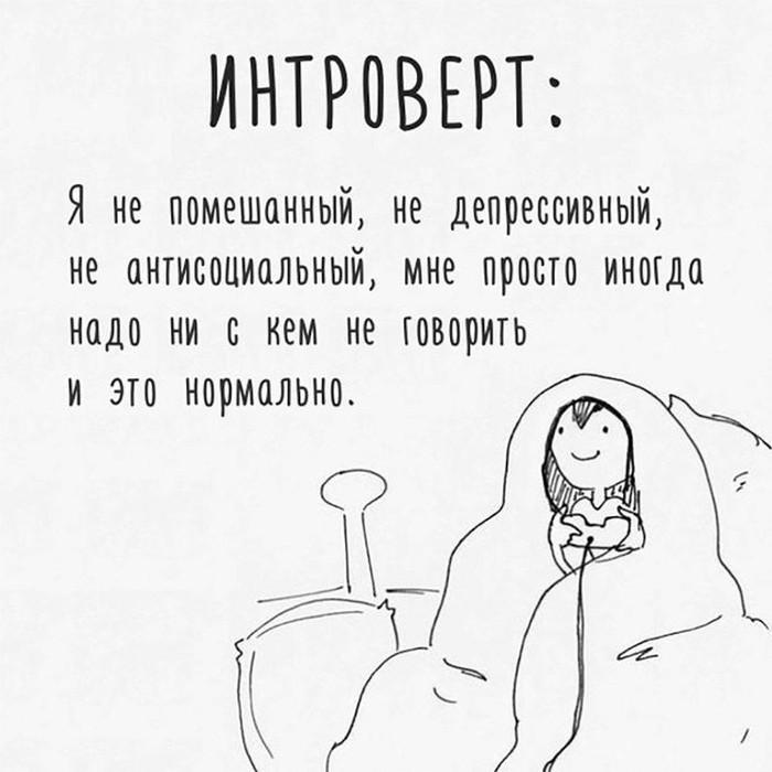 Интроверт? Или просто не мое? Психология личности, Интроверт