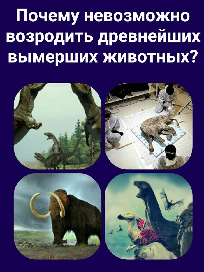 Почему невозможно возродить древнейших вымерших животных История, Древность, Эволюция, Наука, Клонирование, ДНК, Динозавры, Природа, Длиннопост