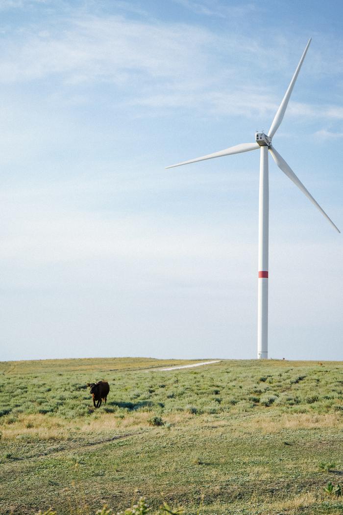 Ветряки в Крыму Крым, Путешествия, Ветряки, ВЭС, Природа, Фотография, Sony, Длиннопост