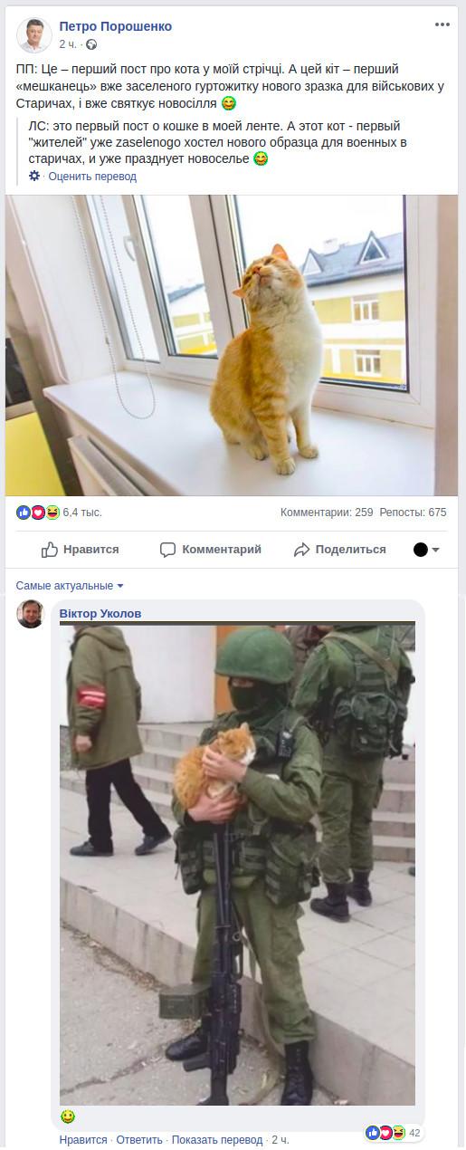 Рыжий кот Порошенко, Украина, Политика, Скриншот-Фотошоп, Юмор, Кот, Кiт, Facebook