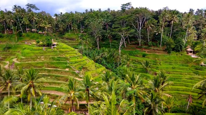 Фотографии из путешествий. Бали (часть 3) Путешествия, Фотография, Бали