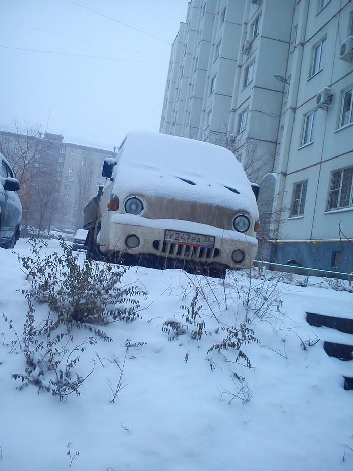 Маленький Портер радуется снегу