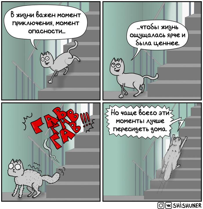"""""""Пропажа"""" #1-5 Шишунер, Комиксы, Кот, Кот Афанасий, Длиннопост"""
