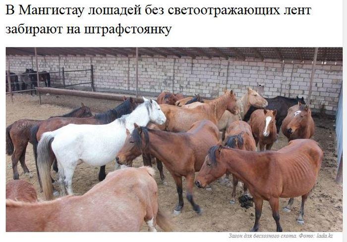 Тем временем в Казахстане..