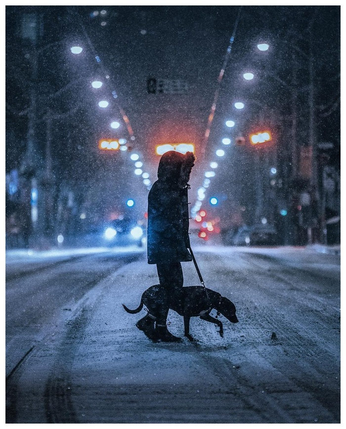 Мне, пожалуйста, один билет до зимнего Торонто. Город, Зима, Торонто, Длиннопост