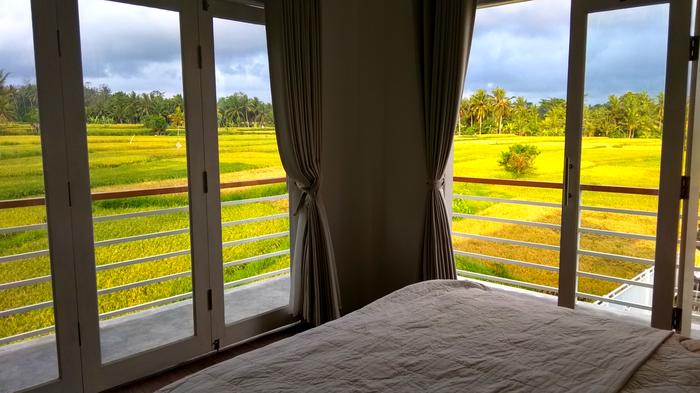 Фотографии из путешествий. Бали Вид из окна, Бали, Путешествия