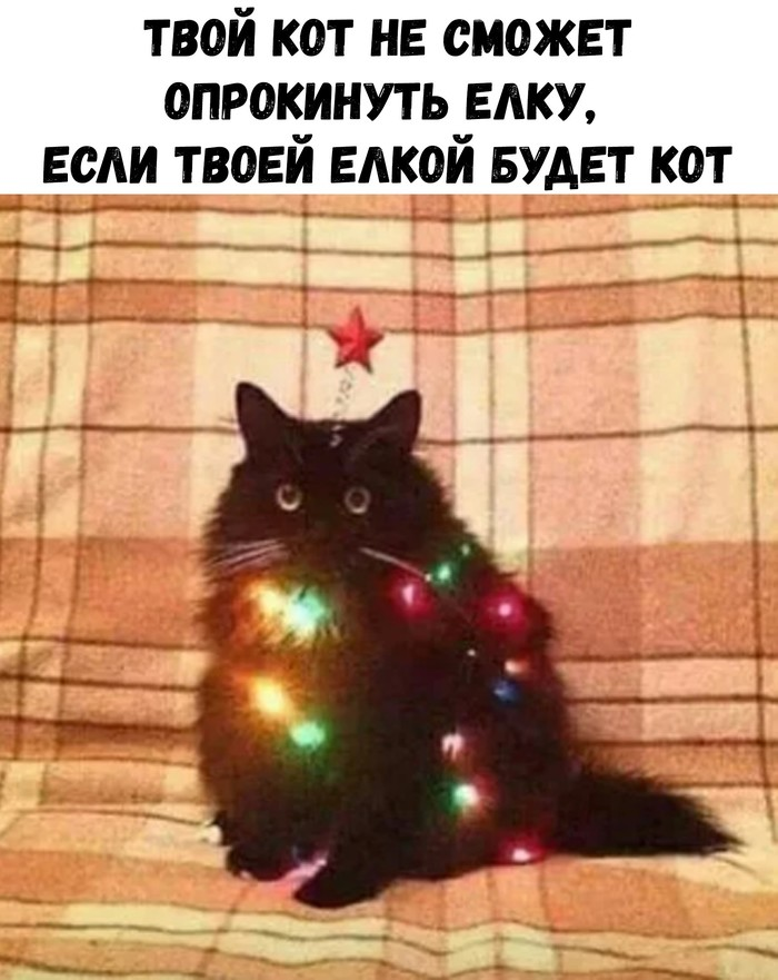 Лайфхак любителям пушистых ) Новогодняя елка, Кот, Лайфхак