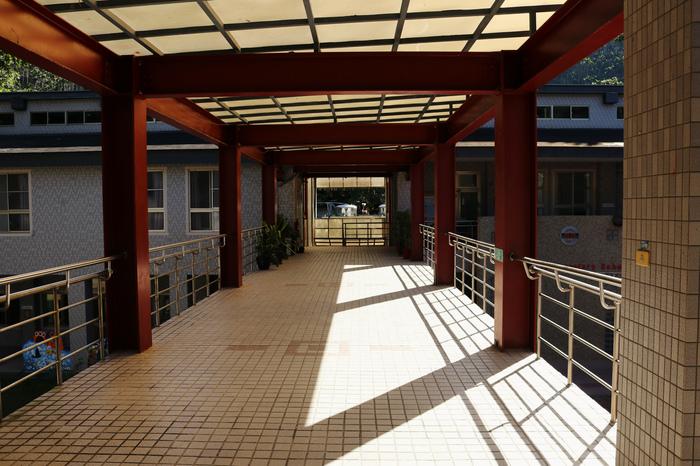 Школа на Тайване, Наньтоу Тайвань, Школа, Образование, Биология, Видео, Длиннопост
