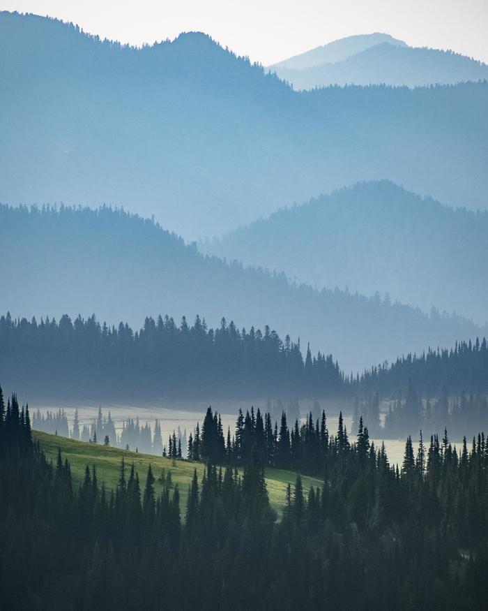 Национальный паркМаунт-Рейнир