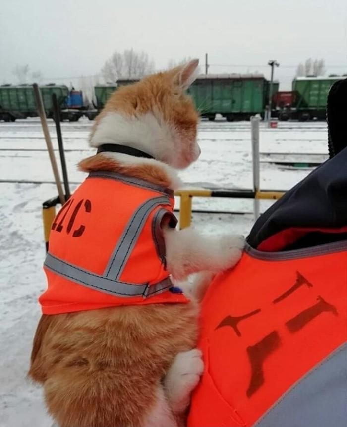 Самый важный работник станции!