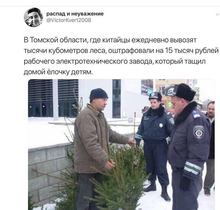 """Вы не рефлексируйте, вы - распространяйте, или """"Томськ - це Україна"""" Фейк, Политика, Внутренняя политика, Разжигание, Гифка"""