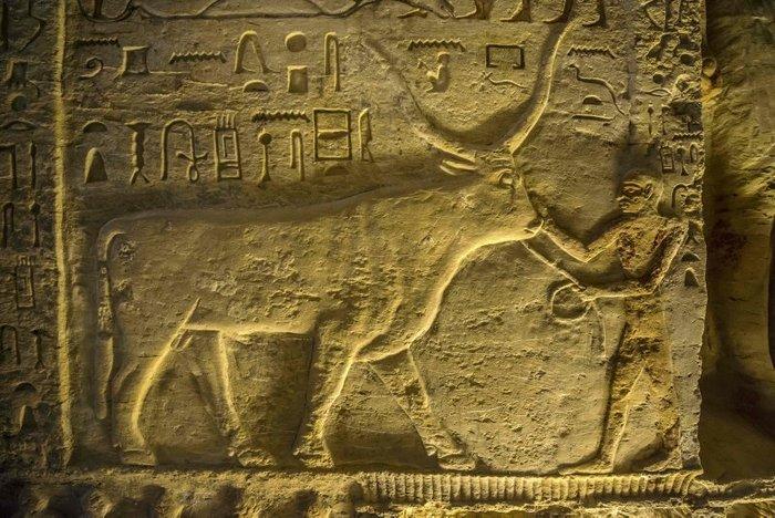 В Египте обнаружили нетронутую гробницу старше 4 тысяч лет Археология, Египет, Находка, Гробницы, Длиннопост