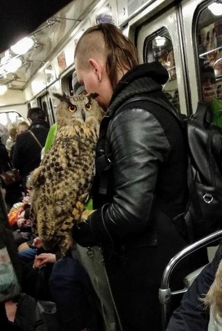 Неожиданная встреча в метро