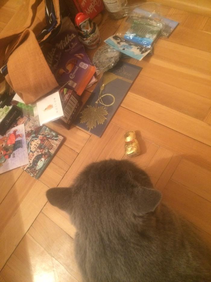 МСК - НОВ. И к нам, в Сибирь, пришел Новый год) Обмен подарками, Тайный Санта, Отчет по обмену подарками, Длиннопост
