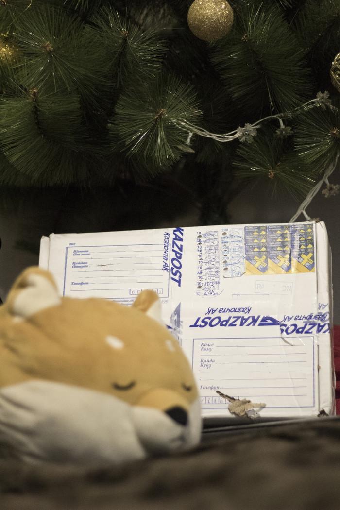 АДМ. Алматы - Санкт-Петербург Отчет по обмену подарками, Тайный Санта, Обмен подарками, Отчет, Длиннопост