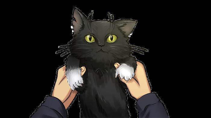 Котик :3 OrikaNekoi, Пираты, Hatsune Miku, Бесконечное Лето, Визуальная новелла, Anime Art