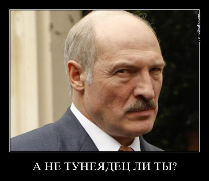 Стабильный Бульболенд. Пост 1. Пособие по безработице Беларусь, Тунеядство, Безработица, Пособие, Длиннопост