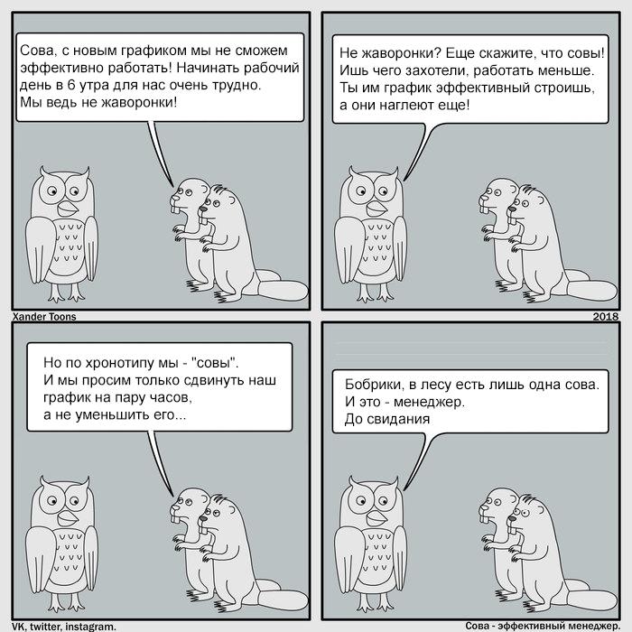 Сова - эффективный менеджер. Неудобный график Фанфики об эффективной сове, Комиксы, Юмор, Работа, Фан-Арт, Управление, Сова, Жаворонки и совы