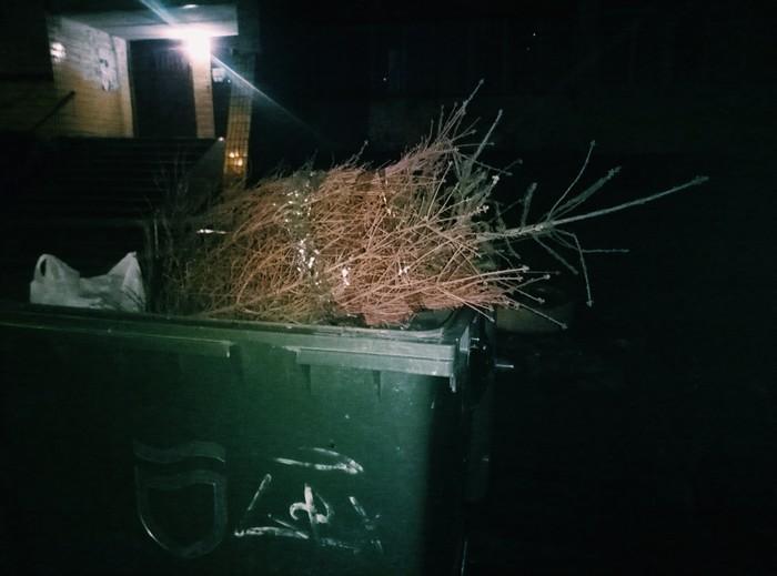 Не выдержала... Новогодняя елка, Новый Год, Лень, Терпение