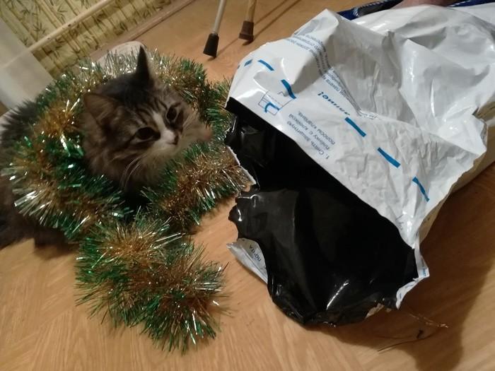 Подарок от АДМ или Почта России тоже хочет подарков. Тайный Санта, Почта России, Новый Год, Длиннопост, Обмен подарками, Отчет по обмену подарками, Кот