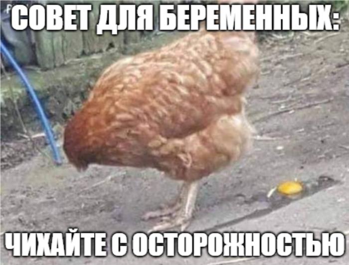 Мем #6
