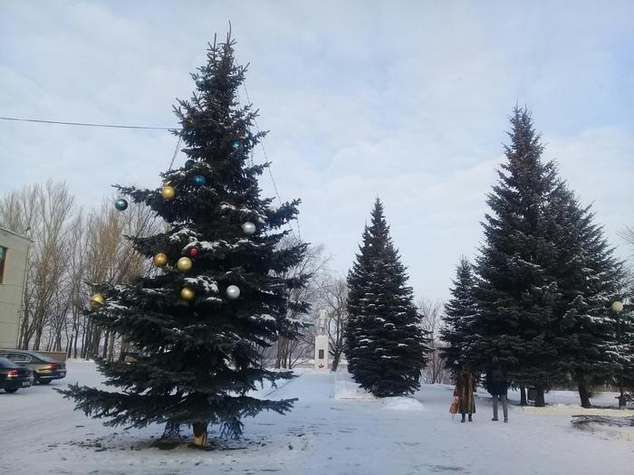 Новогодний маразм Новый Год, Ёлка, Маразм