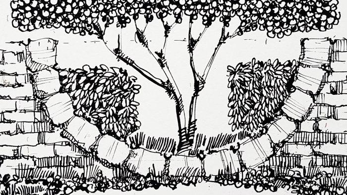 Тренировки с пером и тушью. Рисование, Рисунок, Ландшафтный дизайн, Скетч, Скетчбук, Видео, Длиннопост, Тушь, Кусты