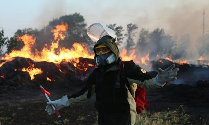 Неновогодний подарок Пожарные, Лесные пожары, Добровольцы, Спасибо