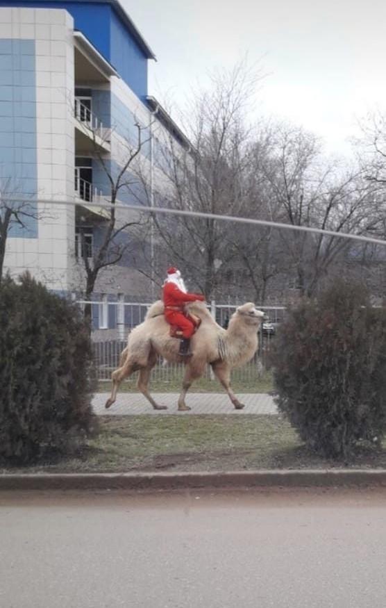 Казахский Деде мороз. Казахстан, Актау, Дед Мороз, Санта-Клаус, Новый Год
