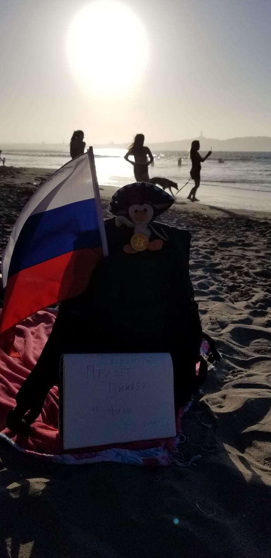 С новым годом из Чили! Чили, Пингвины, Южная Америка, Путешествия, Пляж