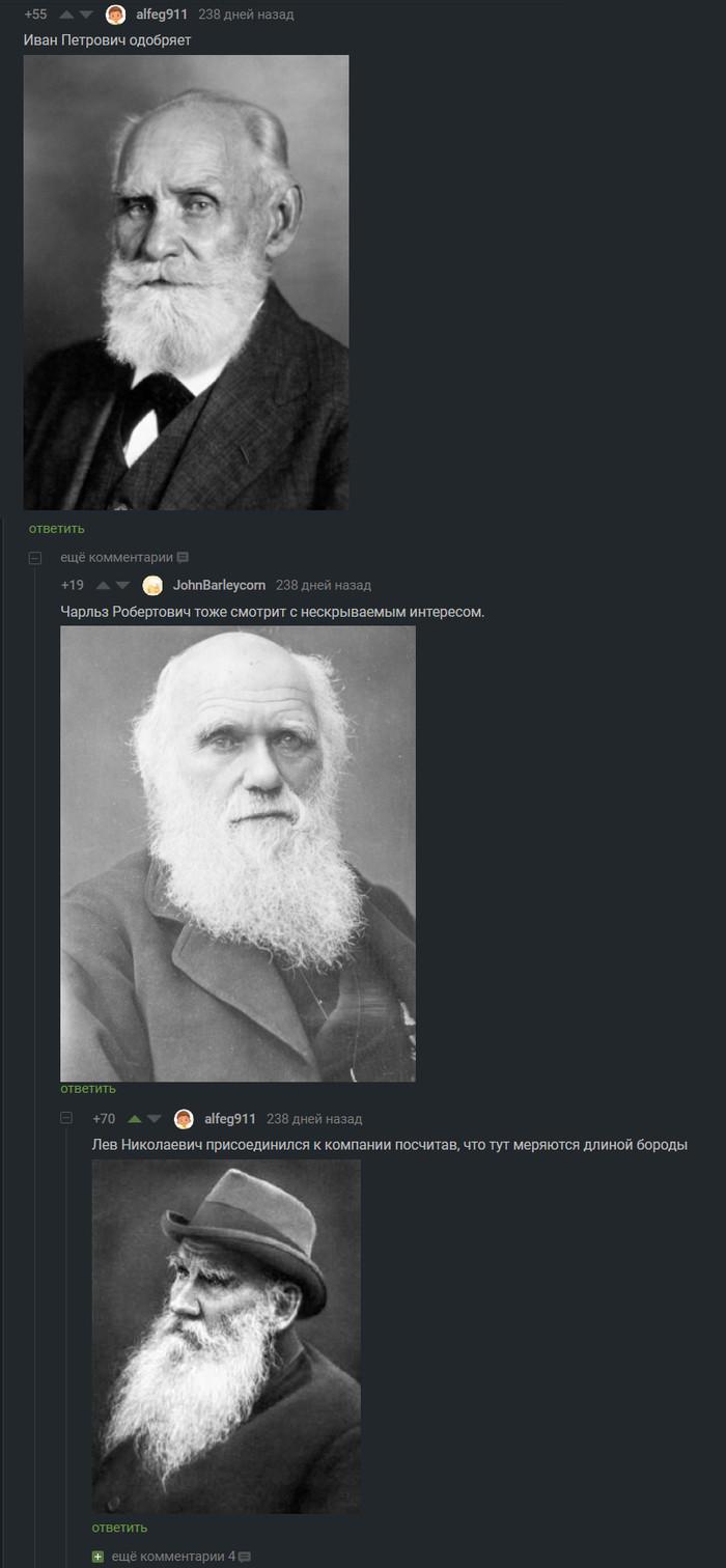 Меряются бородами Комментарии, Лев Толстой, Павлов, Длиннопост, Комментарии на Пикабу, Скриншот