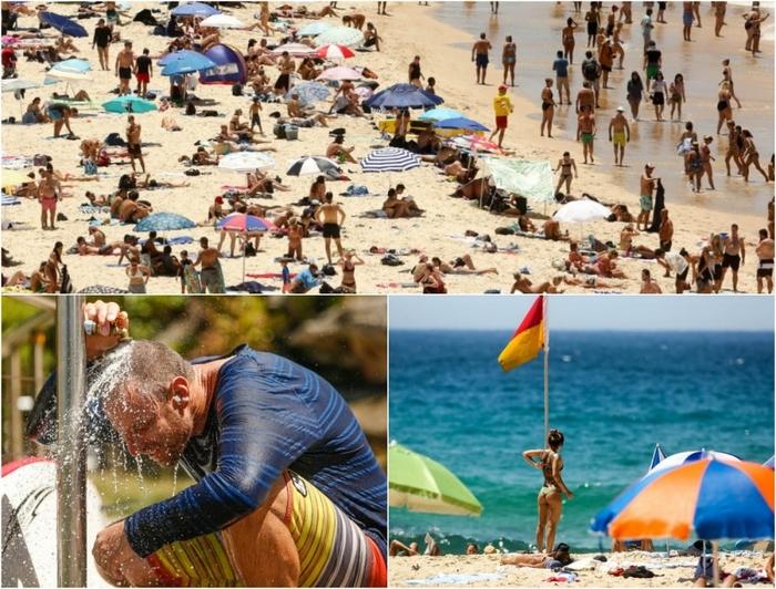 Аномальная жара в Австралии накануне нового года Австралия, Жара, Пляж, Жаркий день, Длиннопост
