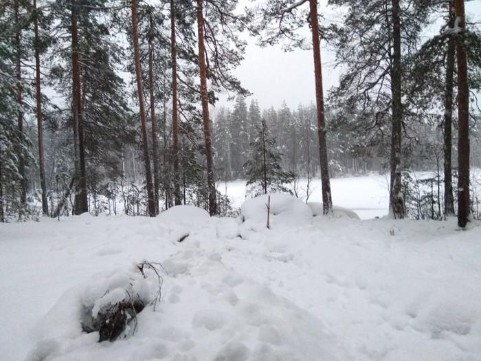 На новый год в поход Нановыйгодвпоход, Туризм, Лес, Поход, Зимний поход, Новый Год
