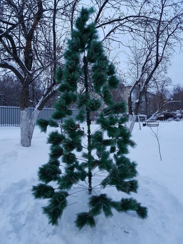 Новогодняя ёлка или не родись красивой) Новогодняя елка, Дом, Управляющая компания, Инициатива, Длиннопост