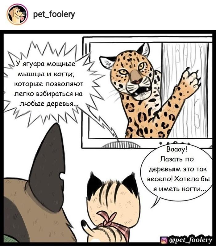 Коготки Pet Foolery, Длиннопост, Брут и пикси, Комиксы
