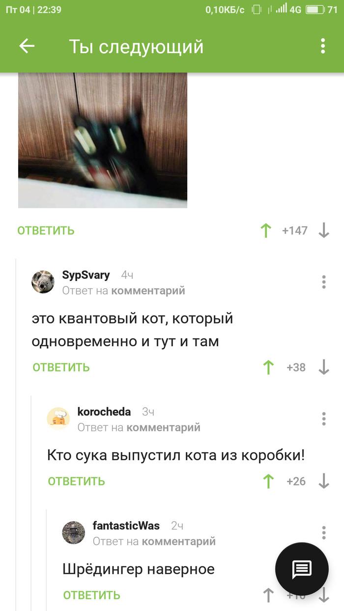 Квантовый кот