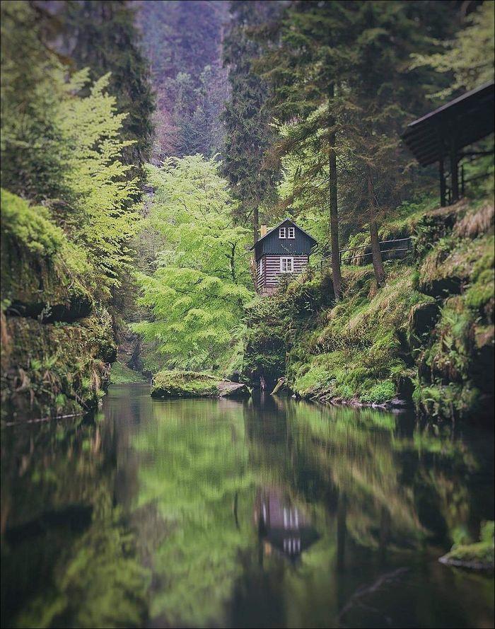 Домик в лесу Лес, Дом, Река, Пруд, Фотография