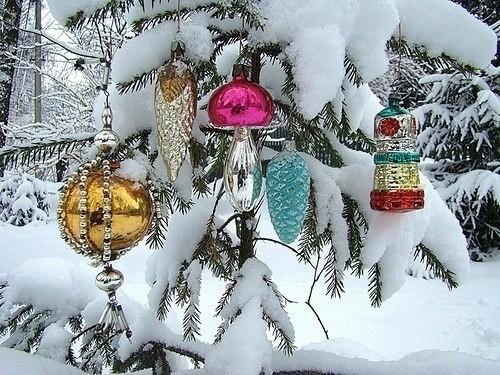 Красивые моменты - позитив... Из сети, Новый Год, Зима, Фотография, Позитив, Длиннопост