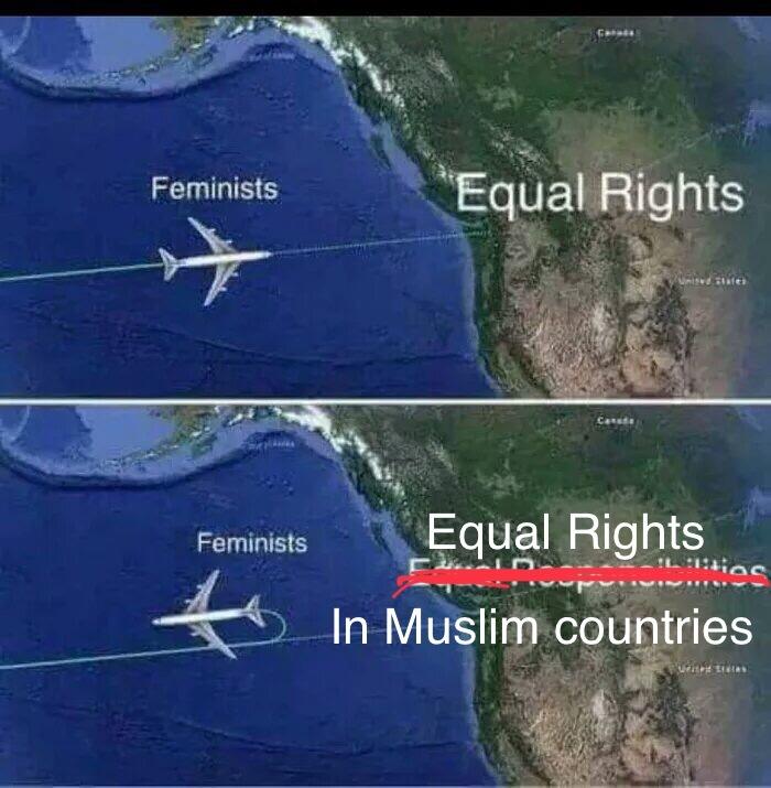 Радикальные фемки и мусульманские страны. Феминизм, Самолет, Юмор