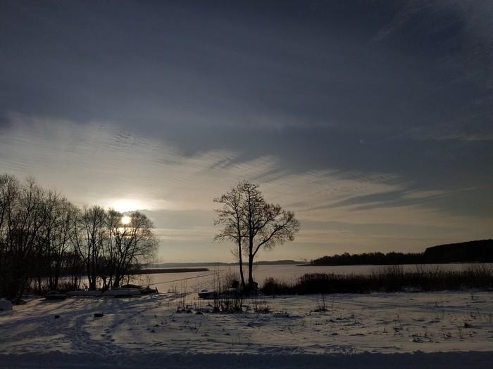 Несколько фото из поездки по Беларуси Фотография, Чукча не фотограф, Беларусь, Браслав, Кот, Природа, Длиннопост