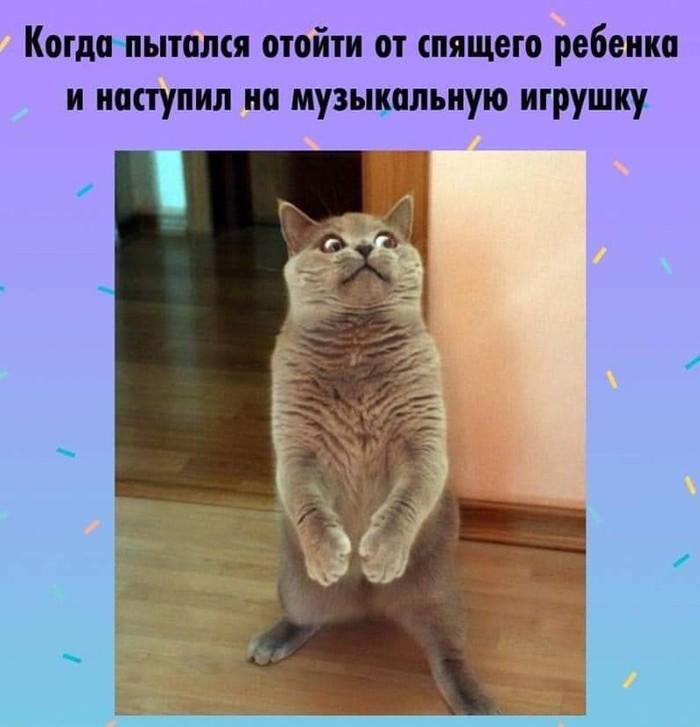 1547232030199034311.jpg