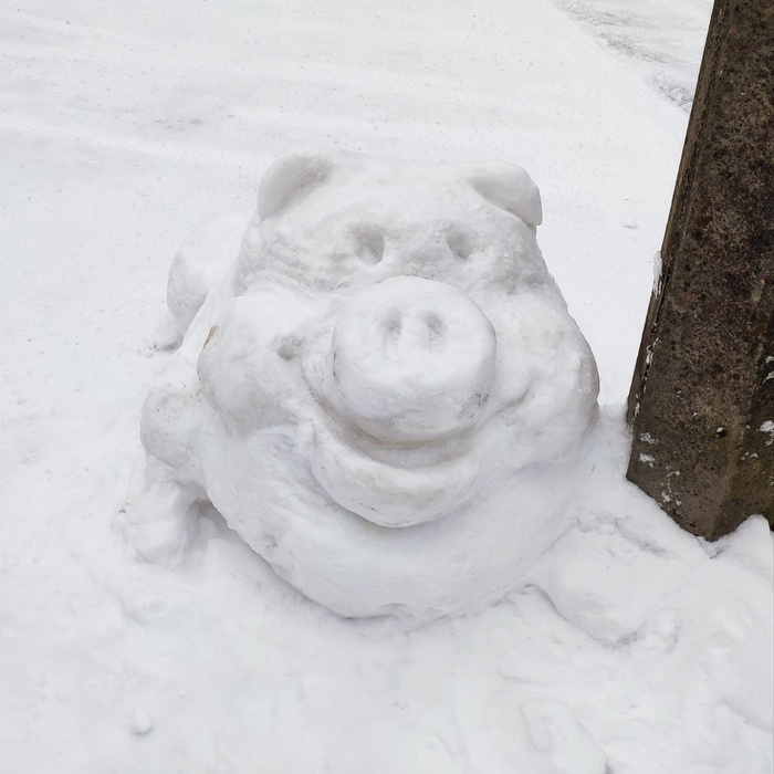Снежный хряк Зима, Снег, Снеговик, Свинья