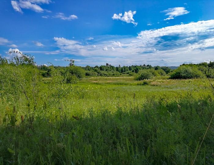 Лето 2017 Дзержинск, Длиннопост, Мобильная фотография, Huawei mate 9, Природа