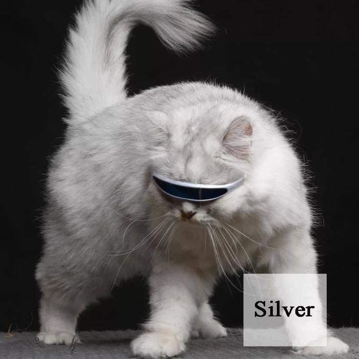 А ваш кот достаточно крут? Алиэкспресс распродажа, Кот, Упоротость, Крутость, Солнцезащитные очки, Длиннопост